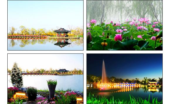 부여 서동공원(궁남지)